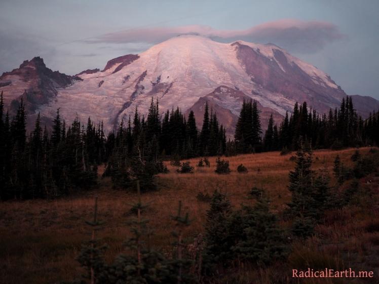 Mount Rainier At Sunrise