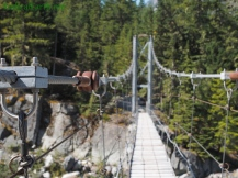 Carbon river suspension bridge