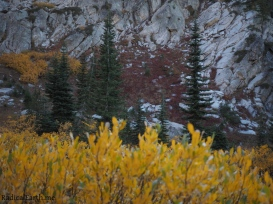 Fall colors above snowslide lake