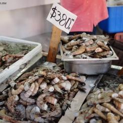 Fresh shrimp!