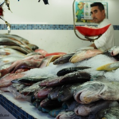 A fishmonger, and his meticulous work on fresh display.
