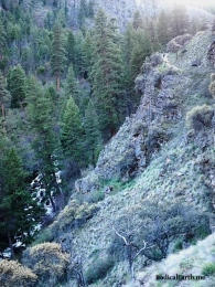 Looking down on the falls of the West Fork Rapid river. Can you see my hiking buddies on the trail?
