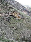 Finding THE trail in this extremely rugged and steep terrain was made exponentially more difficult with all of the elk, deer, and cow trail!