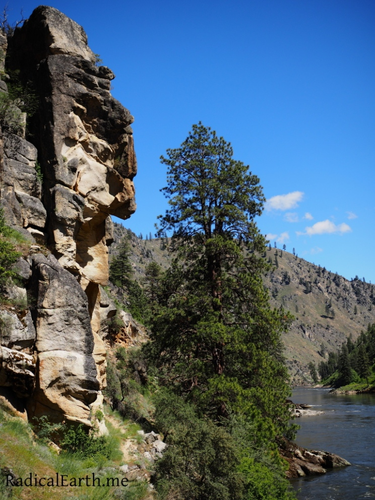 Man in the mountain, on the Salmon River
