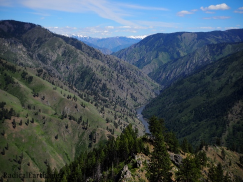 Stunning view of the main Salmon river gorge from Johnson Saddle