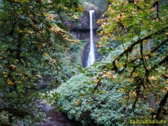 Middle Falls ~ Silver Falls State Park, Oregon, U.S.A.