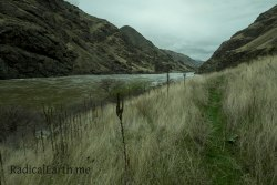 Much of the trail meanders through grassy meadows, with a soft, green grass trail.
